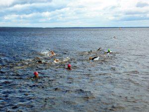 Onego swim - Европейский клуб по обучению плаванию «Мэвис»