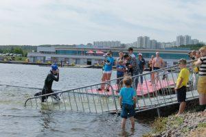 Кубок Чемпионов (Москва) - Европейский клуб по обучению плаванию «Мэвис»