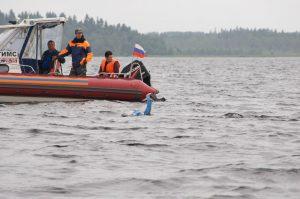 Онега - Европейский клуб по обучению плаванию «Мэвис»